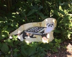 Phone Weasel